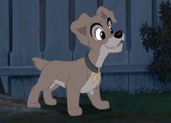 Scamp el cachorro travieso y aventurero Ladytrm2